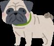 dog_pug-110